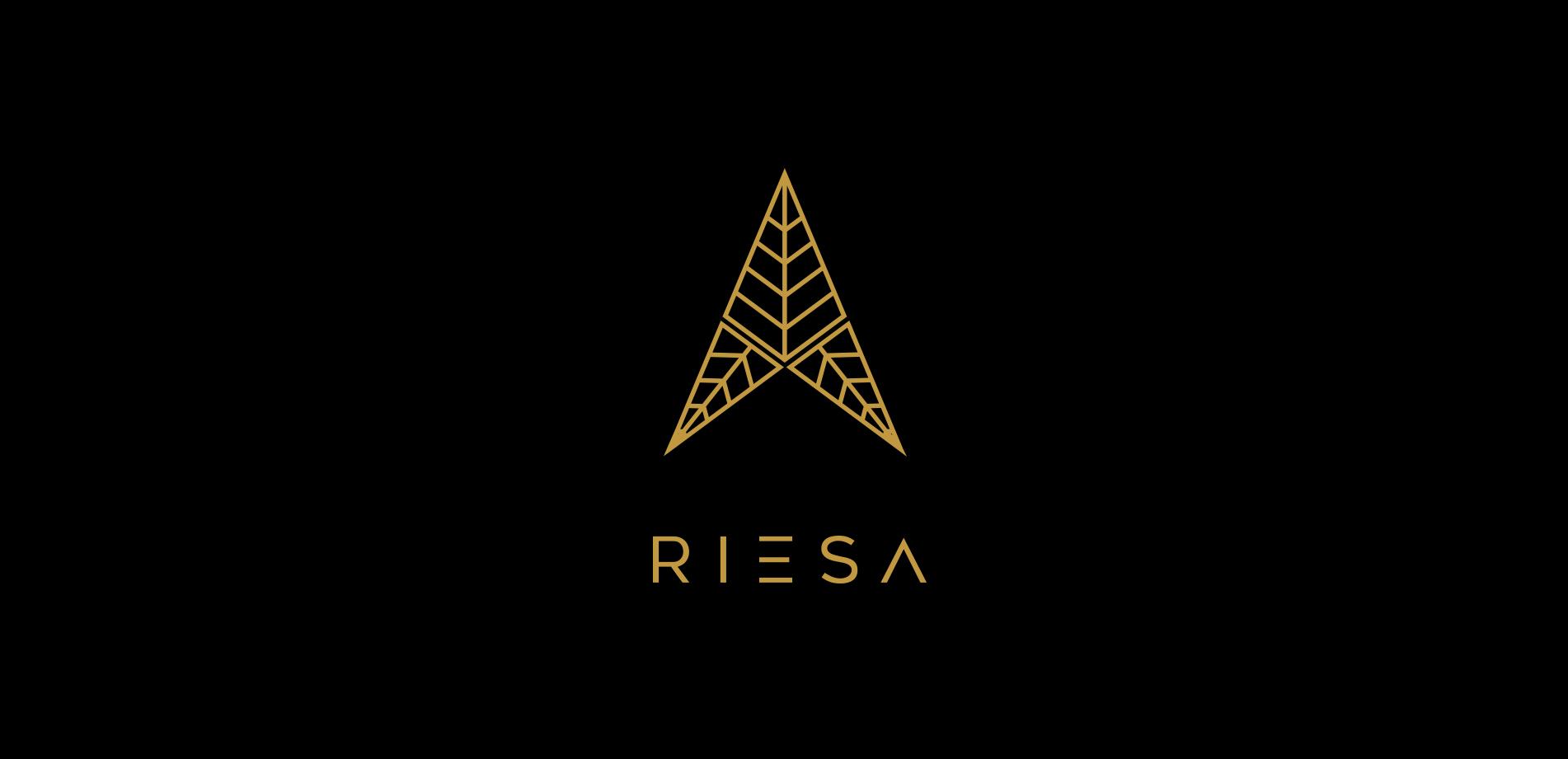 Riesa-Slides-1